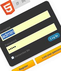 Custom Wordpress Login Page