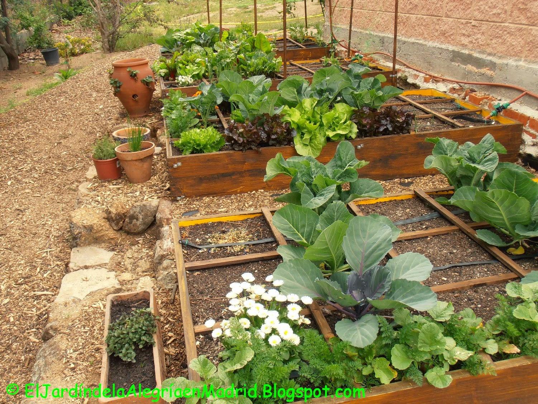 El jard n de la alegr a las hortalizas llenan ya de for Cancion el jardin de la alegria