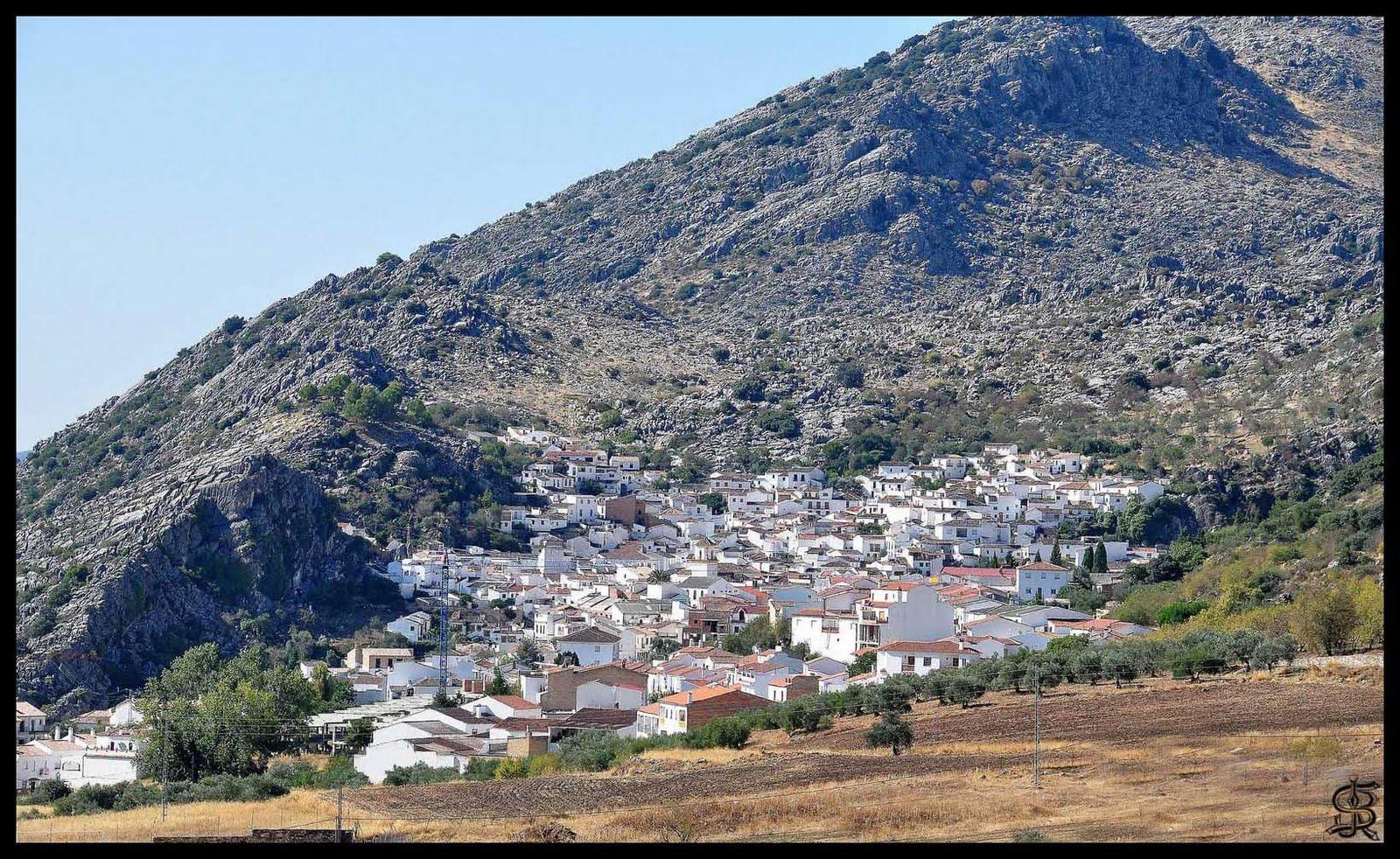 habitantes malaga 2006: