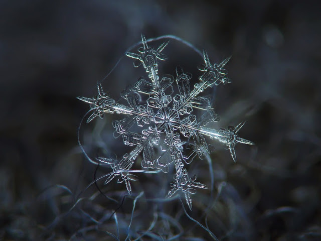 Unbelievable Close-Up Photos Of Snowflakes Reveal A Side Of Winter You've Never Seen