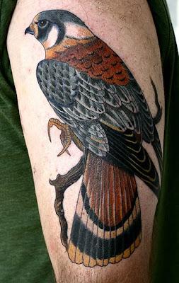 Tattoo Ιδέες δωρεαν, αετός τατουάζ, Arm Band Τατουάζ, τατουαζ στο μπράτσο, Ανδρας Τατουάζ,Animal Tattoos, animation tattoo, beautiful tattoos,