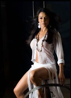 Actress Nikitha Rawal Hot Navel Photos