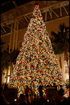 Nashville at Opryland Hotel Christmas Lights