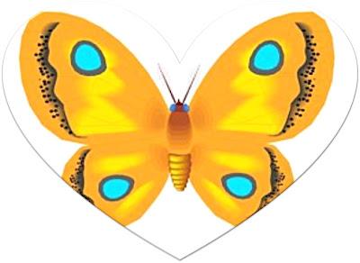 37_corazon_mariposa