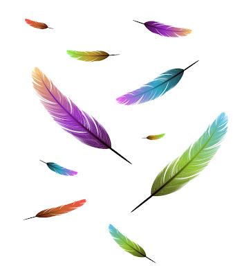 vectores de plumas de colores