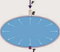 problemas resueltos de fluidos y presiones 4 ESO