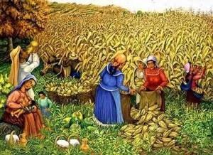 La civilizacion maya la civilizaci n maya for Sembrar maiz y frijol juntos