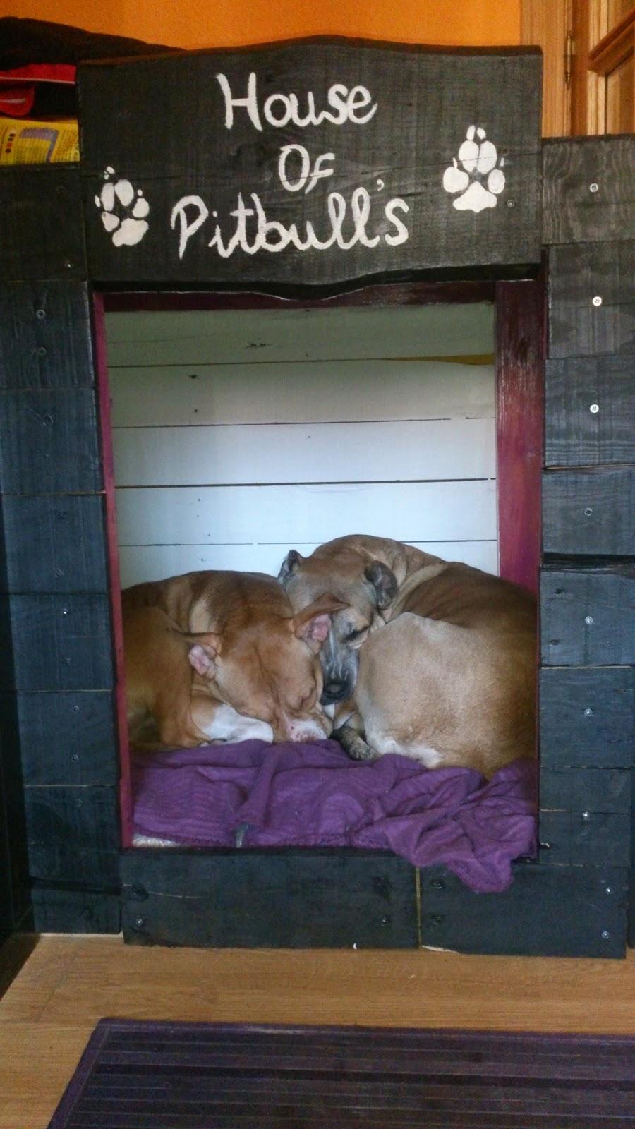 Caseta doble para perros hecha con - Casas para perros con palets ...