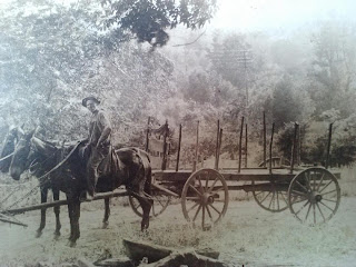 Alexander Yarbrough on a wagon