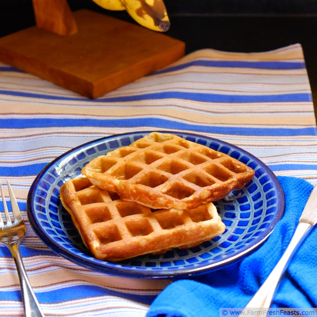 Banana Blender Waffles from Farm Fresh Feasts