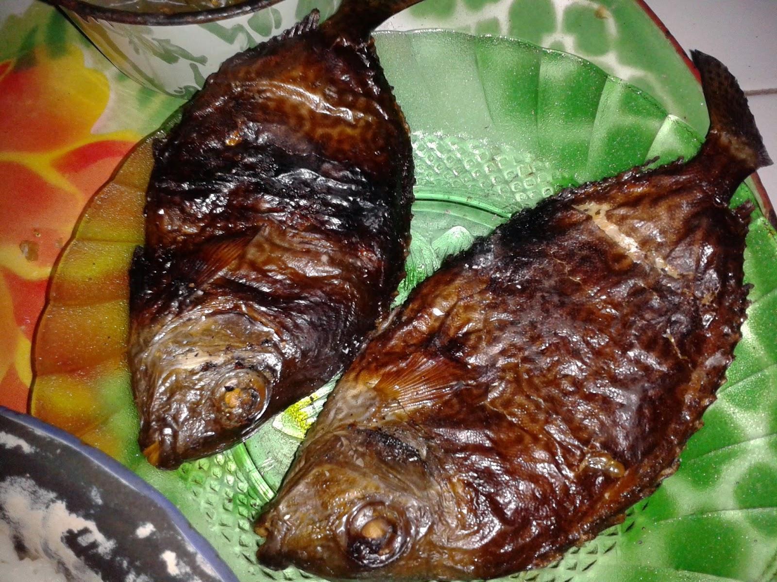 Ikan bakar Semadar/Baronang siap saji