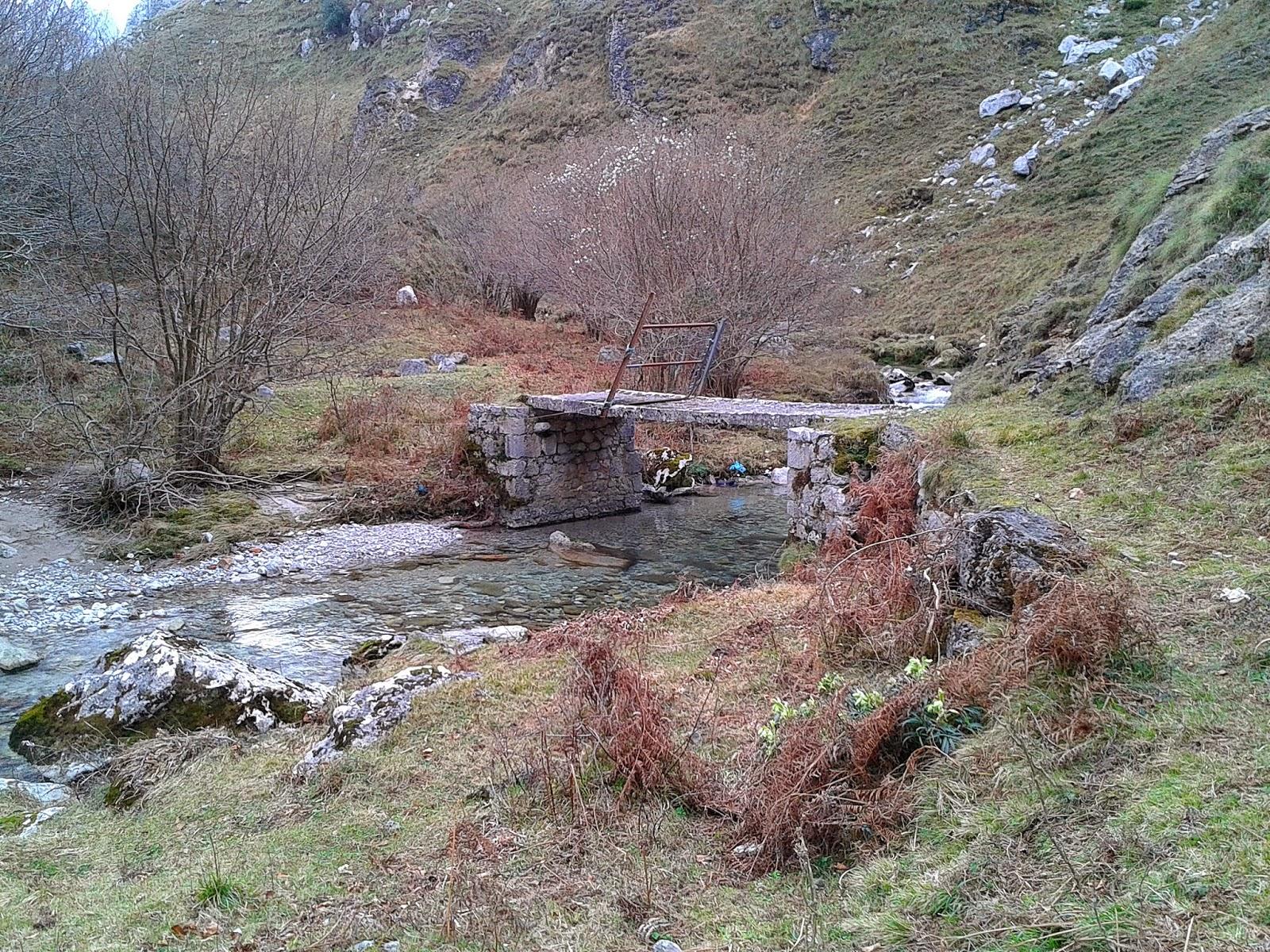 Puente Campo de Jaza