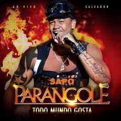 lancamentos Download   Parangolé : Todo Mundo Gosta (2011)