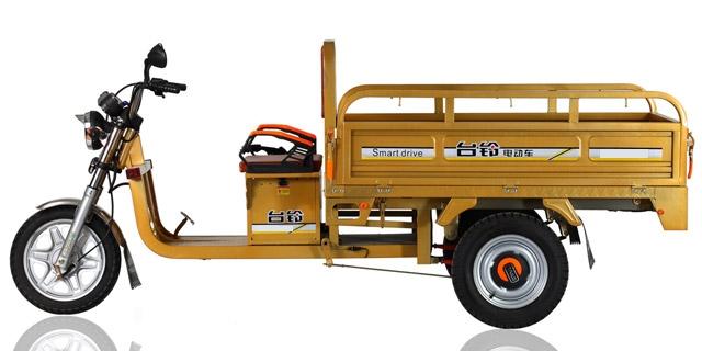 triciclo electrico-moto torito