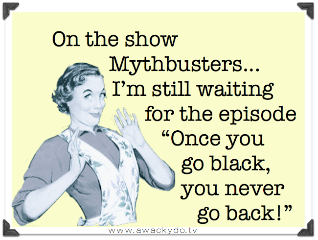 mythbusters show once you go black you never go back, myth busters