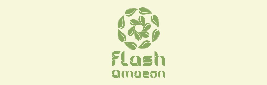 Flash Amazon