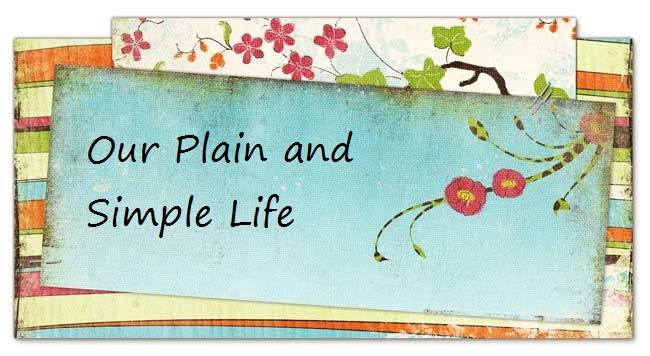 Our Plain and Simple Life