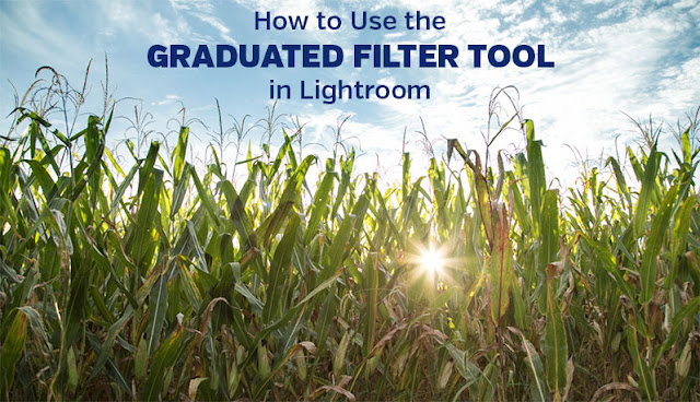 How to Use the Graduated Filter Tool in Lightroom