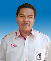 Ketua Pemuda UMNO Bahagian Permatang Pauh