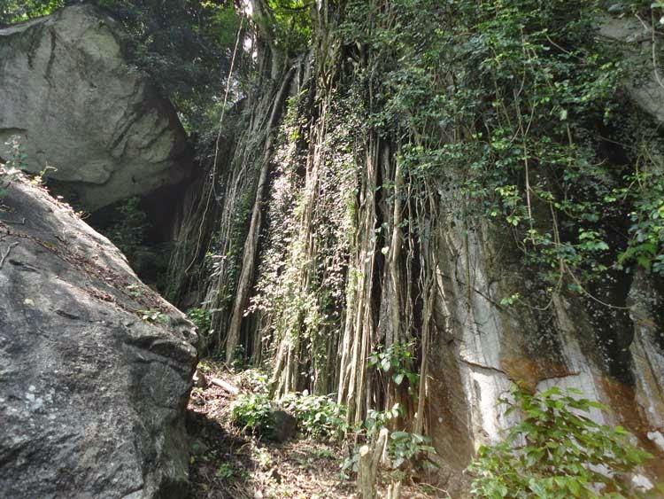 Unseen Beautiful Places In Sri Lanka Wilshire Mountain Matale Visit Sri Lanka