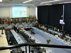 WHO consultation on NCDs in Brazzaville