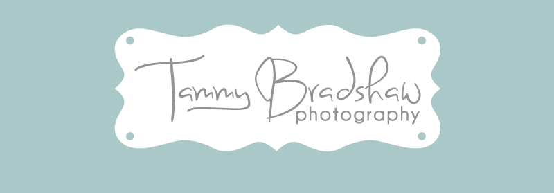 Tammy Bradshaw Photography