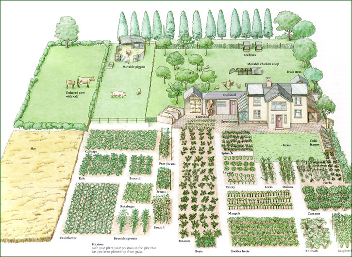 covertress: Family-Scale Permaculture Gardening