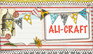 Ali-Craft Shop