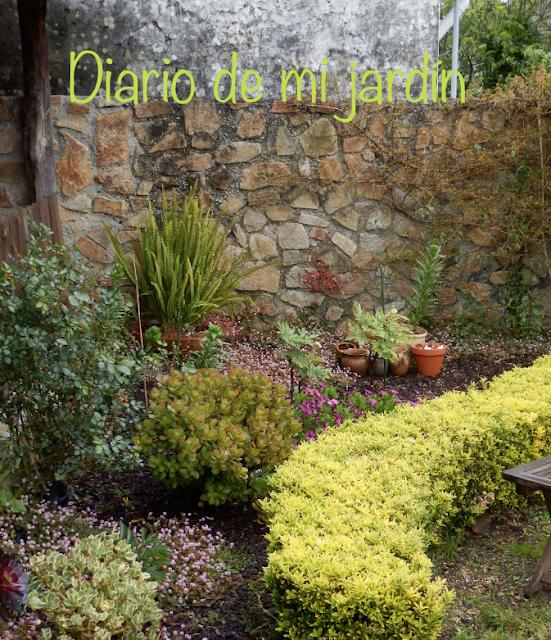 Diario de mi jard n rincones y miradas for Rincones de jardines pequenos