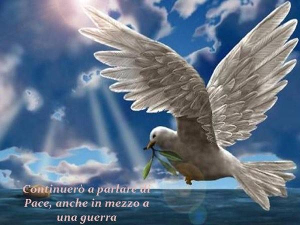 Porumbelul alb!