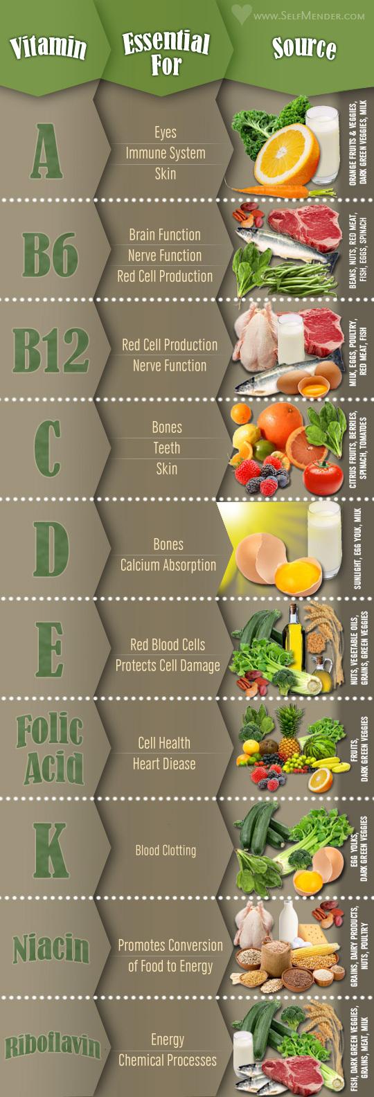 ビタミン 食材 インフォグラフィックス 分類