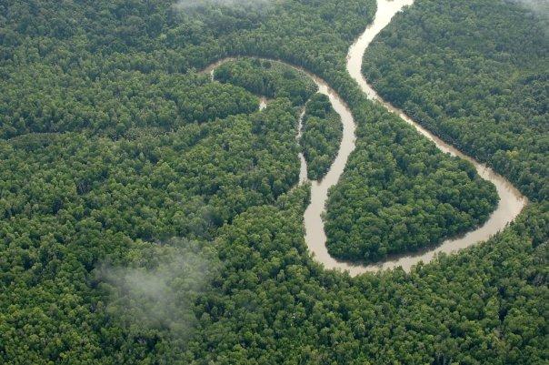 Aktivitas penambangan ancam kelestarian hutan Sarmi