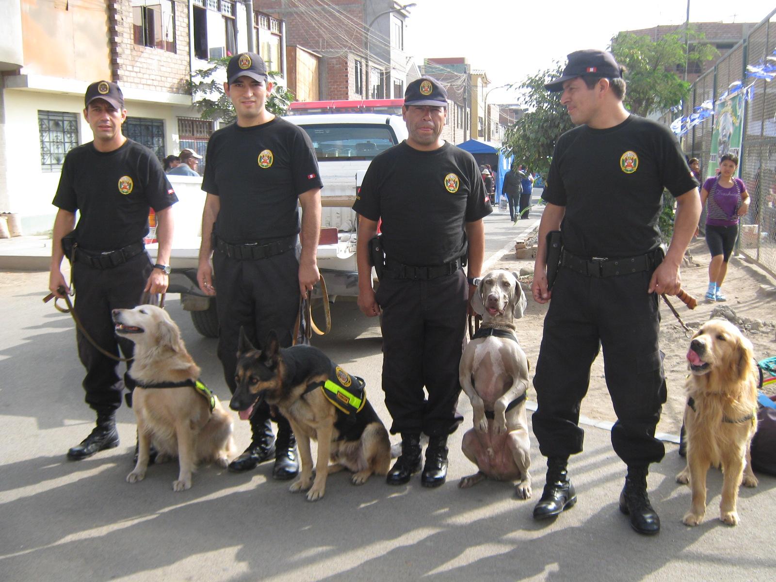 Departamento de la policia canina policia canina - Oficina del policia ...