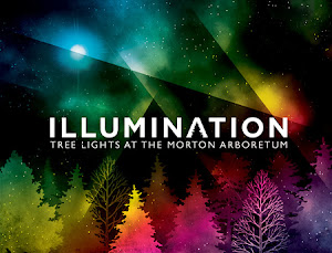 WIN 4 Tickets to Illumination at Morton Arboretum ($40 value) Through midnight 12/4.