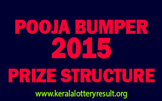 Pooja Bumper 2015 BR-46 Lottery Prize Structure