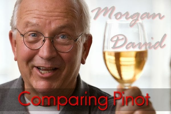 Morgan David - Wine Expert