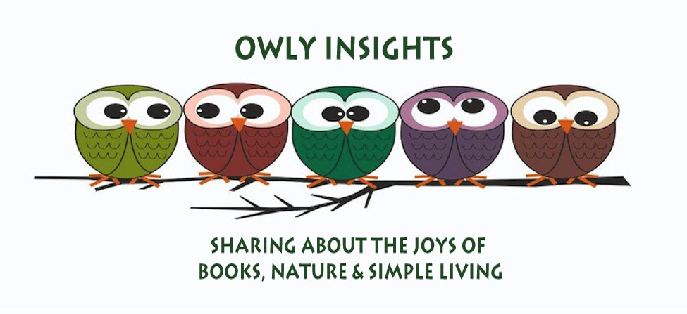 Owly Insights