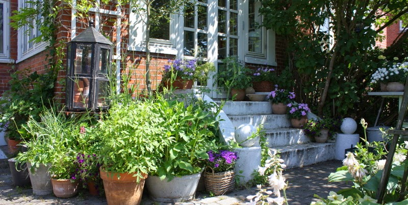 Havefolket: en krukkehave i odense