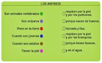 http://www.ceipjuanherreraalcausa.es/Recursosdidacticos/SEGUNDO/datos/03_cmedio/03_Recursos/actividades/03/act8.htm
