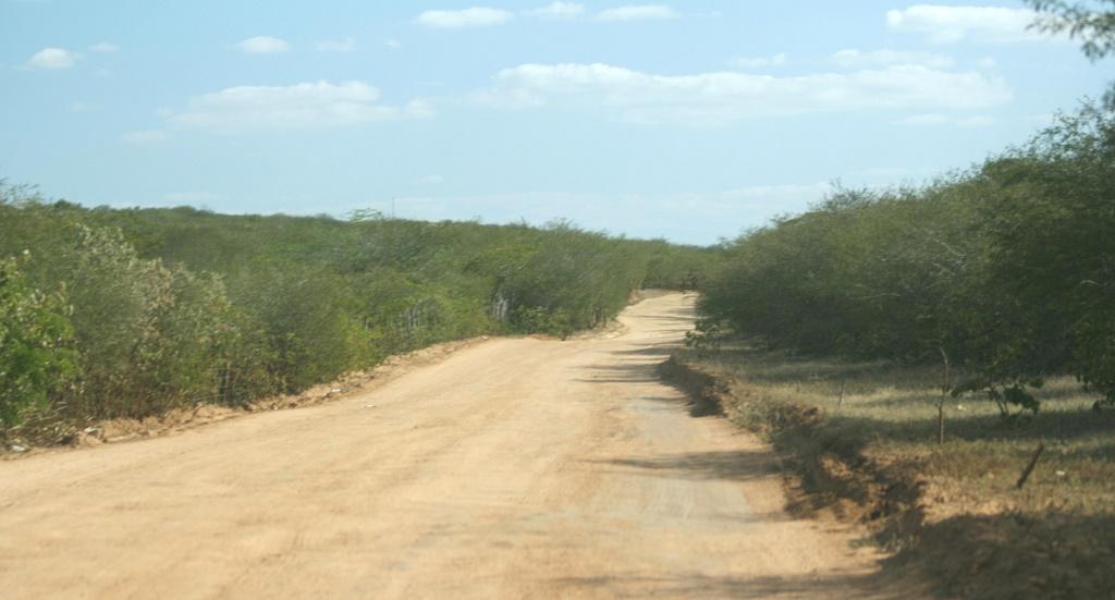 Homens encapuzados estavam assaltando em estrada da zona rural de Camalaú