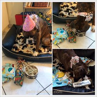 Amys Geburtstagsgeschenke an ihrem 2. Geburtstag