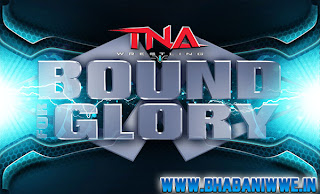 News » Complete List Of TNA Bound For Glory 2013 Series Competitors