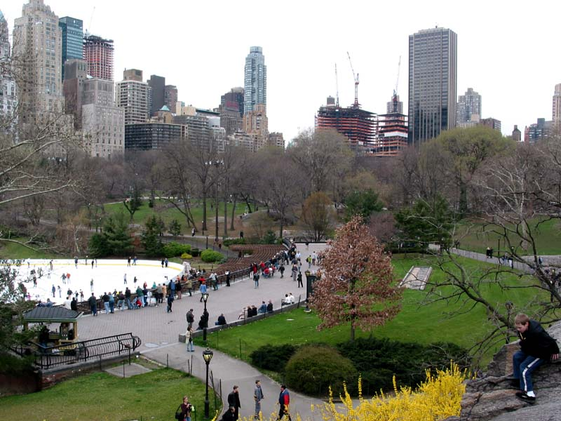 New york central park the natural hub in the city