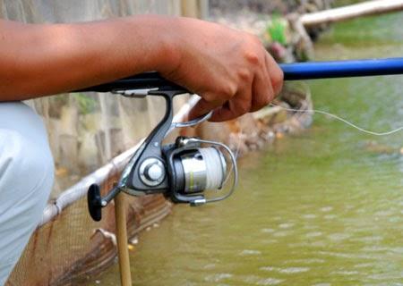Mua máy câu cá giá rẻ ở đâu tại Thành phố Hồ Chí Minh