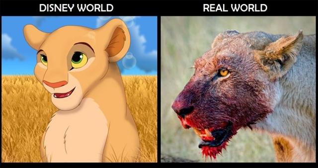 El Mundo de Disney Vs. El Mundo Real