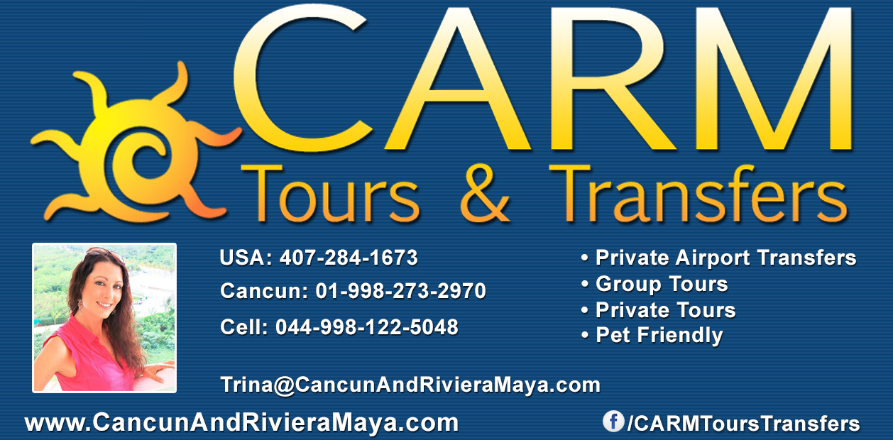 Affordable airport transfers and tours!