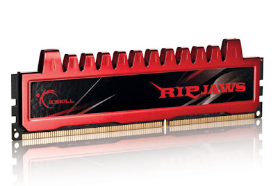 G.Skill Ripjaws DDR3 32 GB PC RAM