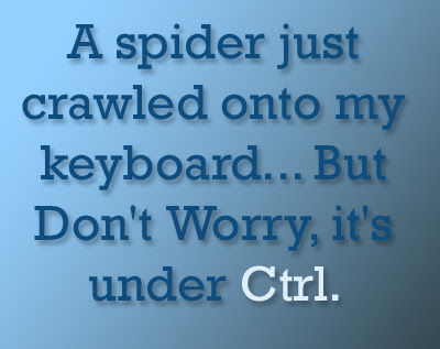 A spider just crawled onto my keyboard
