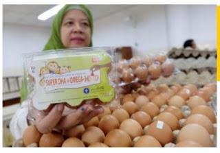 D'Premium, Telur dengan Kandungan DHA 10 Kali Lipat