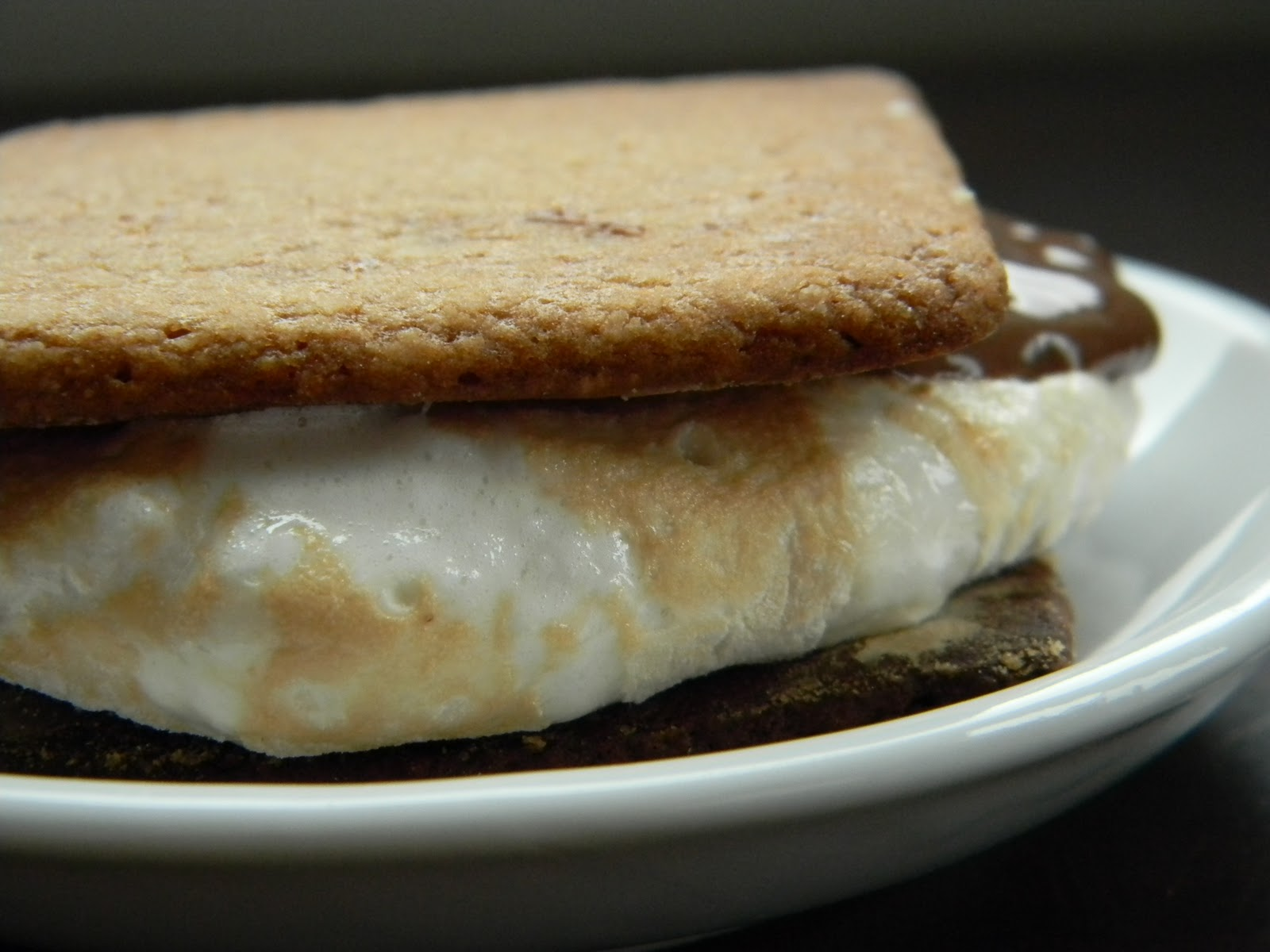 Recipes from the Pickle Boat: Homemade S'mores